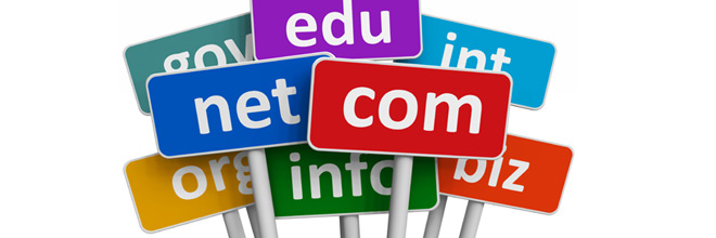 How to choose an appropriate Domain Name